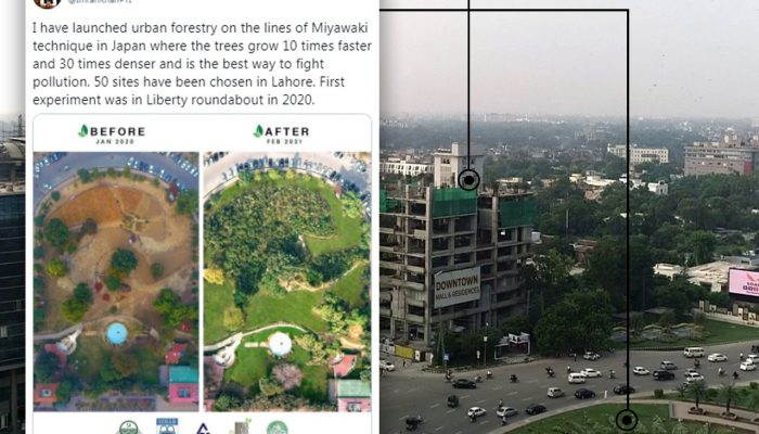 MIYAWAKI URBAN FORESTRY PROJECT IN LIBERTY LAHORE